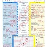 záznam o dopravní nehodě (euroformulář)
